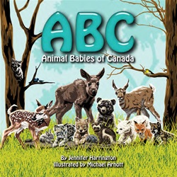 ABC Animal Babies of Canada, children's book, my little green shop, vancouver, bc, canada, eco-friendly, Animal ABCs, downtown vancouver, online store, online, online store, Jennifer Harrington, kids, baby books, board books, animals,